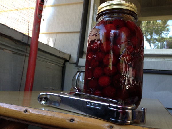 Pickled Sour Cherries: Recipe