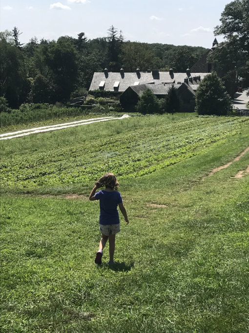 A Visit to Stone Barns Center for Food & Agriculture