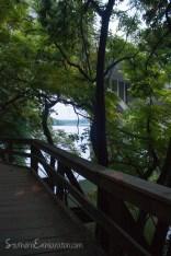 Lady Bird Lake | Austin, TX