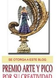 Premios Arte y Pico