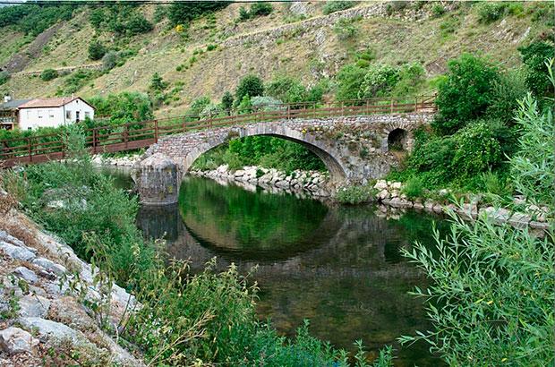 Puente sobre el río Toría en Vegacervera