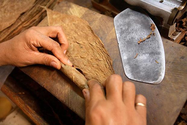 Elaboración artesanal del puro habano