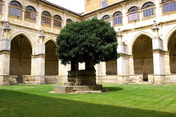 Claustro renacentista del Real Monasterio de San Zoilo, Carrión de los Condes (Palencia)