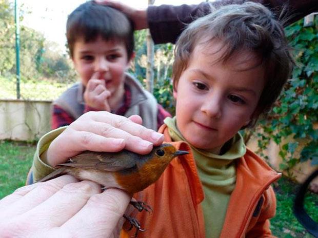 aves niños infancia