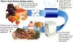 Oregon-Freeze-Dry_Freeze-Drying-Process