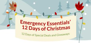 12 Days of Christmas Giveaway–Day One