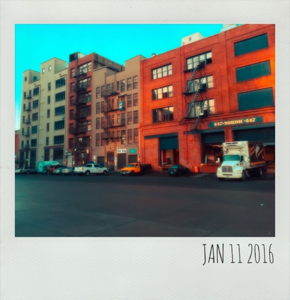 Polaroid Jan 11