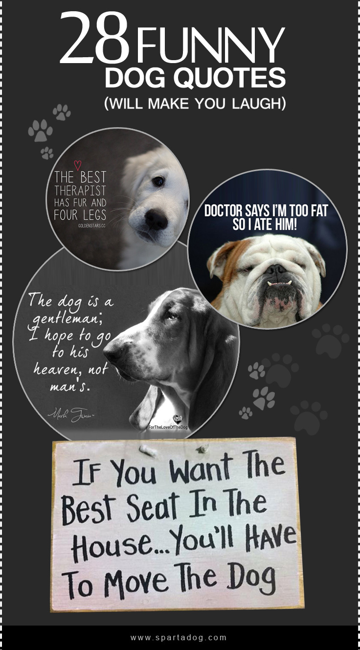 Admirable Cards Ny Dog Quotes Ny Dog Quotes Spartadog Blog Ny Dog Quotes Home Ny Dog Quotes bark post Funny Dog Quotes
