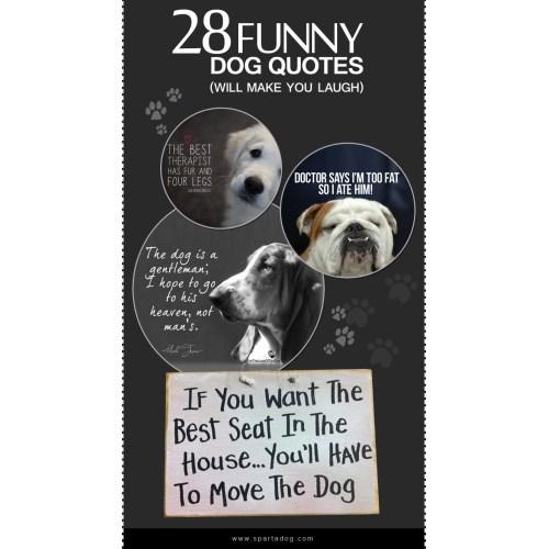 Medium Crop Of Funny Dog Quotes