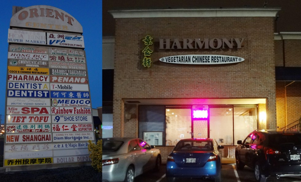 Harmony Vegetarian Buford Highway Atlanta