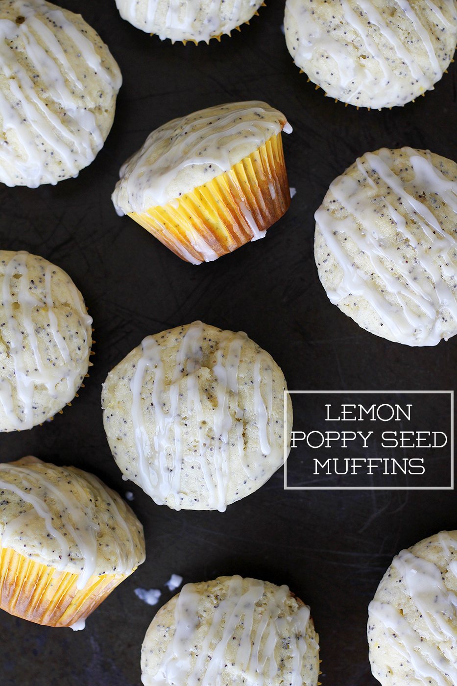 Lemon Poppy Seed Muffins | Splash of Something