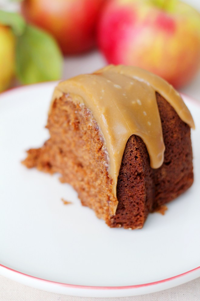 Applesauce Spice Cake | Splash of Something