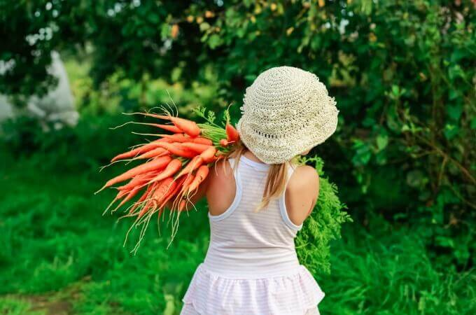 What can you do to get your children to eat fruits and vegetables? And to LIKE them? Here is the information you need to know about the development of the sense of taste and how to use it to your advantage to get your children eating fruits and veggies like a pro in no time! www.spoilmyfamily.com