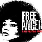 Free Angela provides a brilliant, invaluable look into America's history