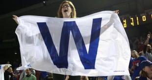 """Lots of """"W"""" for the Cubs so far. Credit: AP/Bryon Houlgrave"""