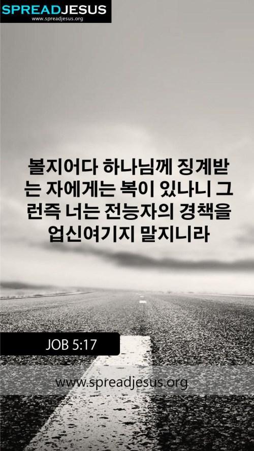 Medium Of Short Bible Quotes