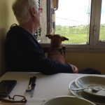 Steve and Millie enjoying the view