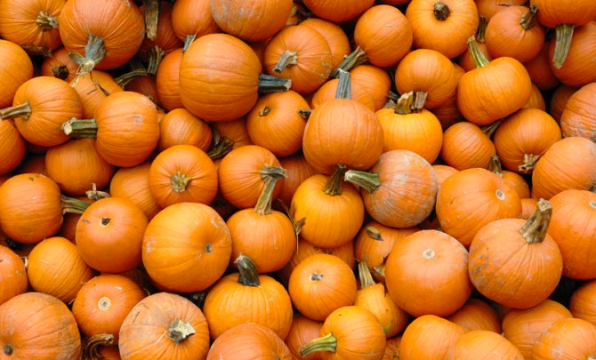 Power-Vitamin-Pumpkin-Health-Benefit-Good-You-Spry