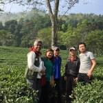 Makaibari field trip