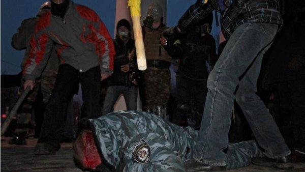 kijev berkut
