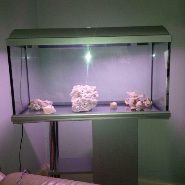 Fish aquarium with stand.