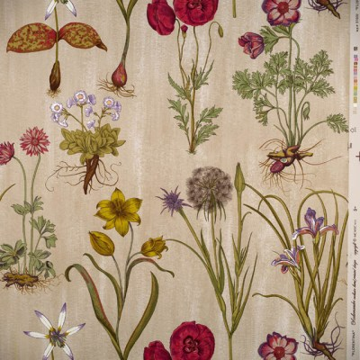 Florentina Wallpaper by Scalamandre - Traditional - Wallpaper - by inside fabric