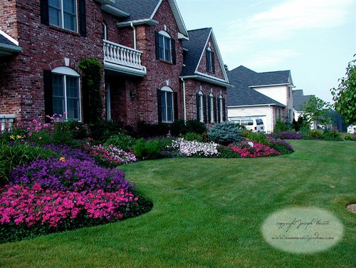 Front Yard Landscaping Ideas - Annuals add color to the front yard