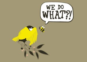 Consenting to Questions, on the Hilltown Families Blog