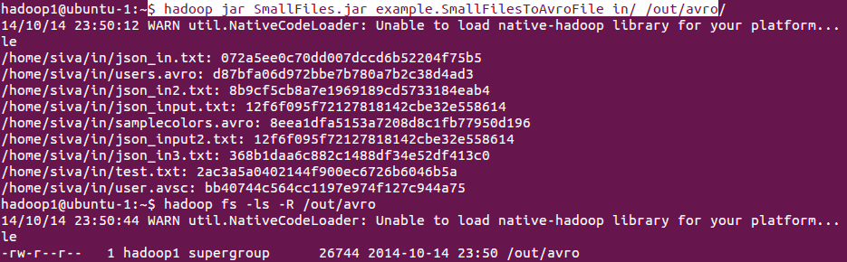 SmallFilesToAvroFile