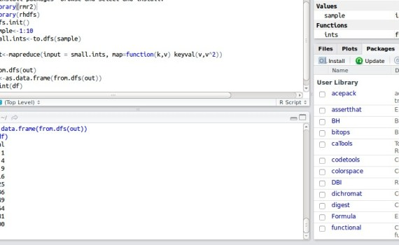 RStudio Example Run