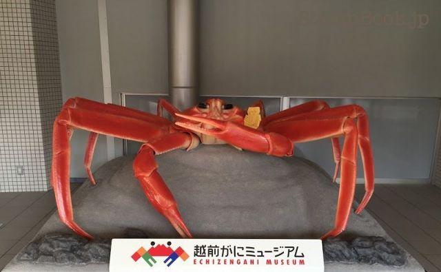 michinoeki-echizen-08