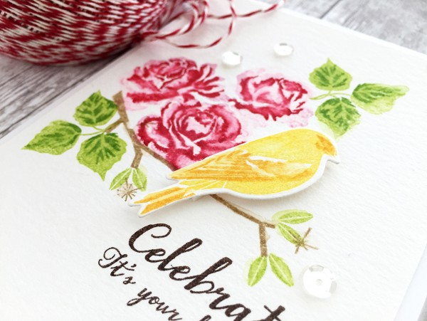 Tip: Stamps with a Water Color Look