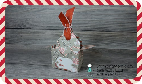 Stampin Up Candy Cane Lane Bag in a Box designed by demo Beth McCullough. Please see more card and gift ideas at www.StampingMom.com #StampingMom