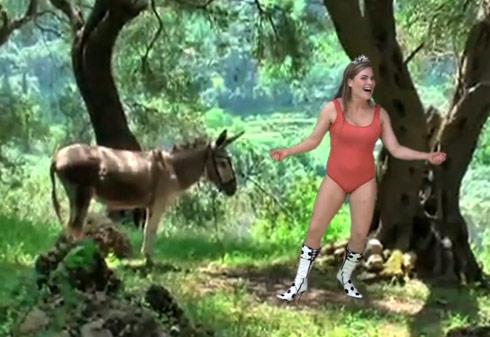 women sex donkey kong