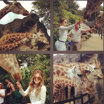 Khloe Kardashian & giraffe