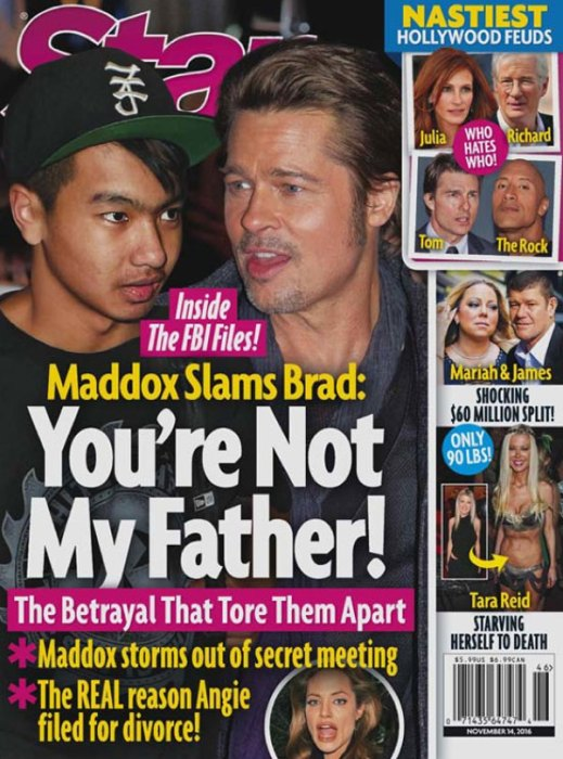 brad-pitt-angelina-jolie-divorce-son-maddox-fight-5