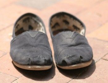 TOMS repaired