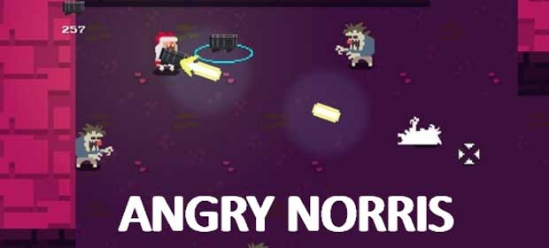 Angry Norris