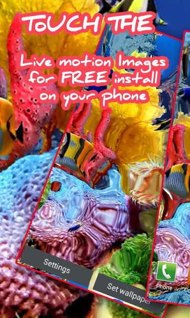 Touch the Fish Live Wallpaper