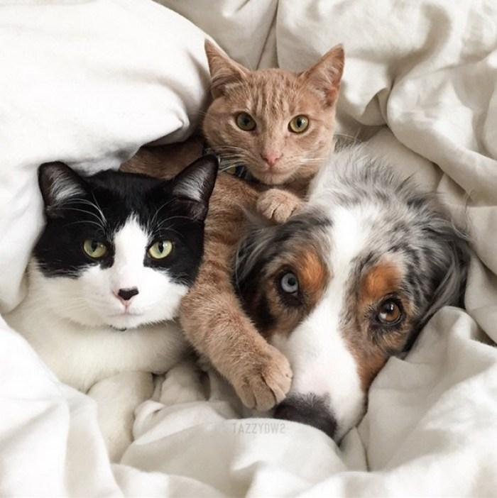We Cuddle On Sundays Too