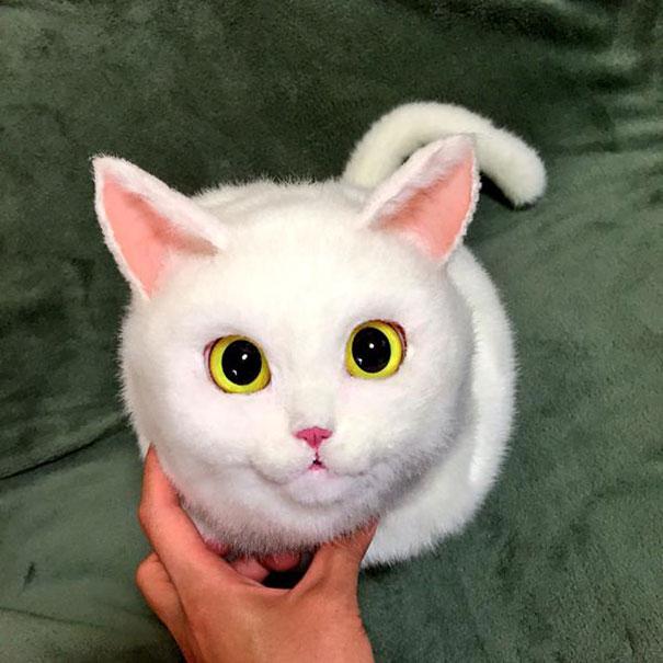 handmade-realistyczne-cat-torby-pico-38