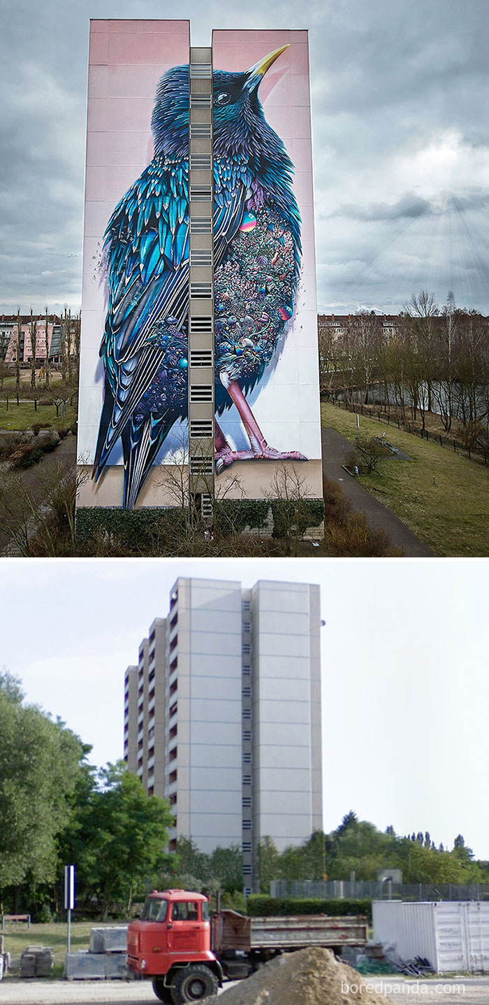 Giant Starling Mural In Berlin