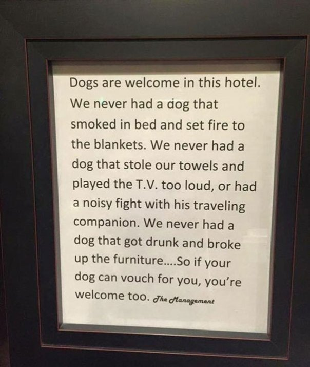 This Hotels Pet Policy