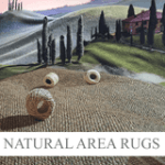 COUPON CODE: FREEDOM50 - Save $50 off on orders of $150 or more | Natural Area Rugs Coupons
