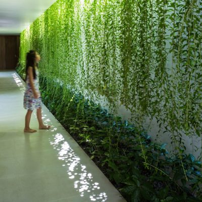 MIA Design Studio envelopes Vietnam house in plant-covered walls and courtyards – Sig Nordal, Jr.