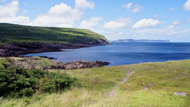 View from Cape Spear