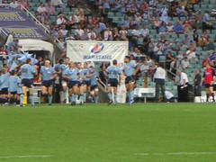 Here come the Tahs!