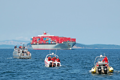 Container Ship, Vancouver Island