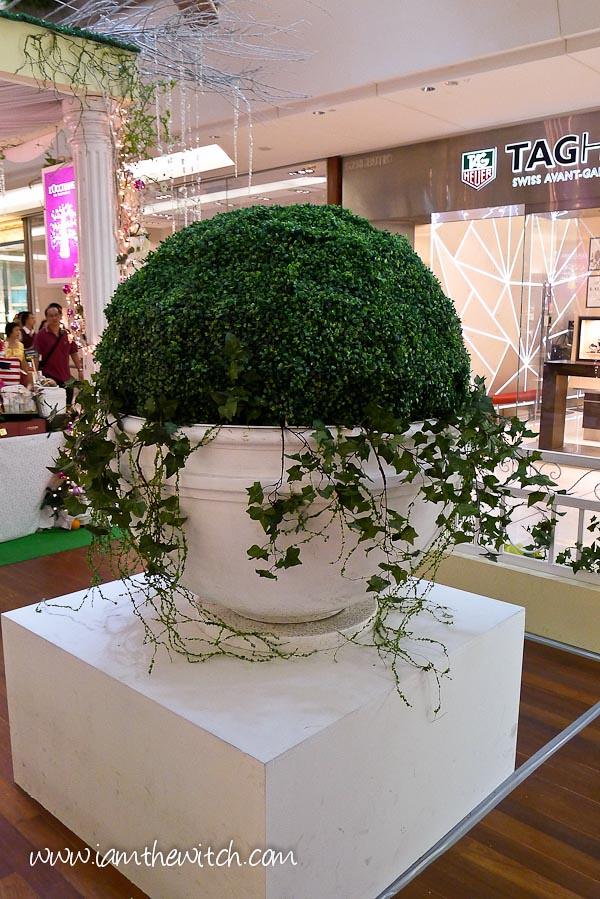 Gardens Xmas-6-1