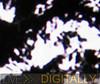 HD movie still (zoom)
